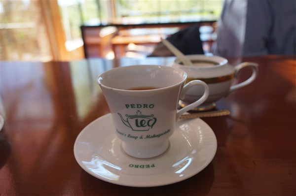 Pedro tea center 試飲