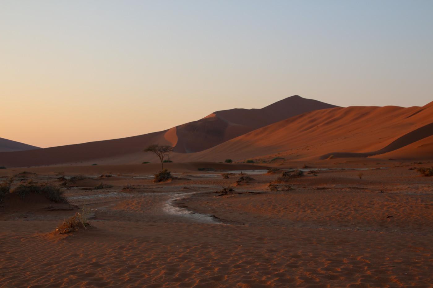 明け方のナミブ砂漠