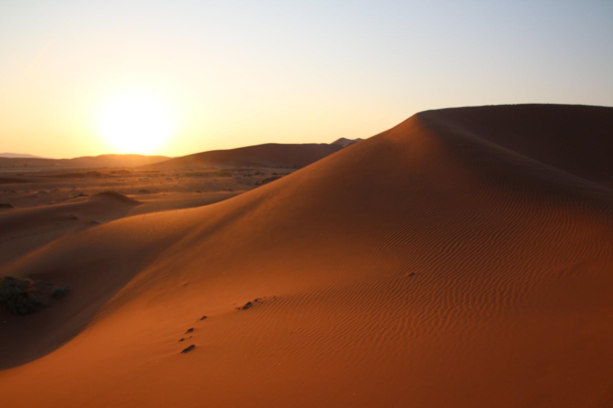 朝日に照らされる砂漠