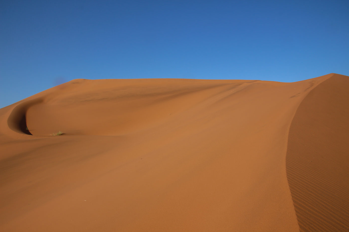 美しい砂漠