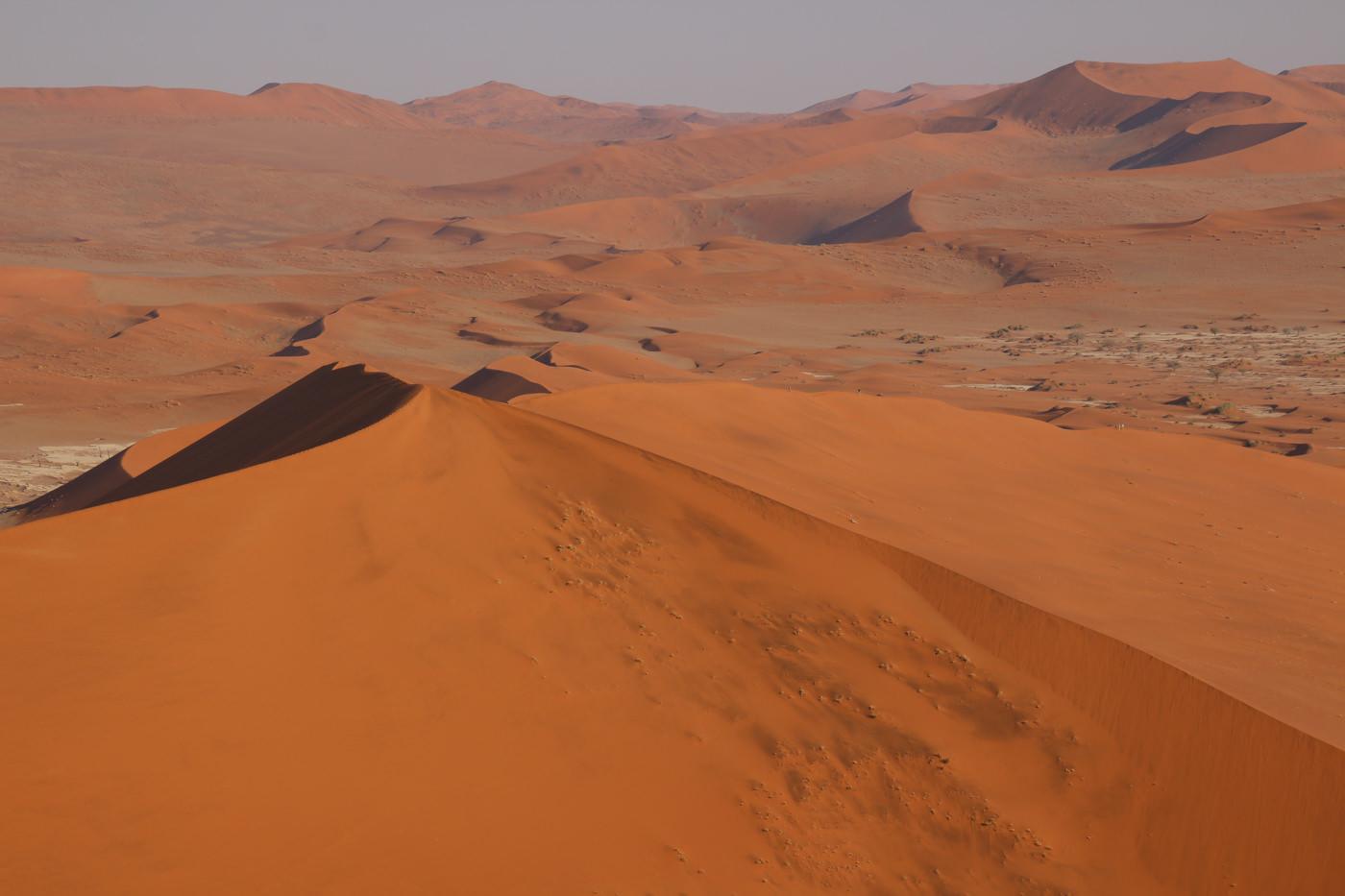 世界中のさまざまな砂漠の美しい景色の高画質画像まとめ!