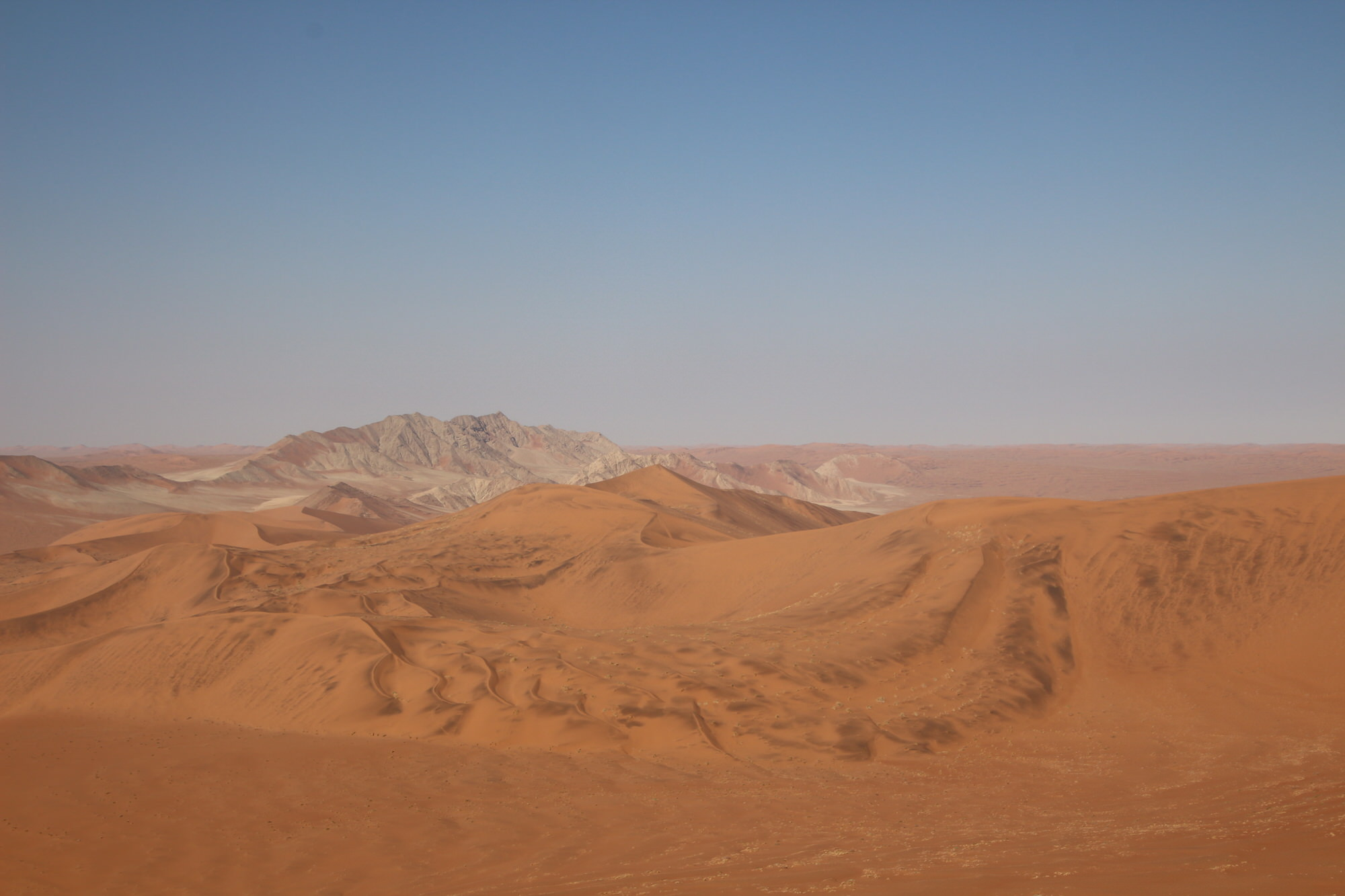 ナミブ砂漠観光 ソススフレイ