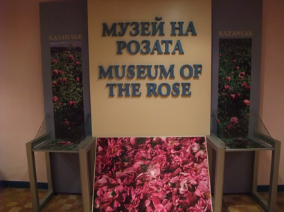 Museum of the Rose