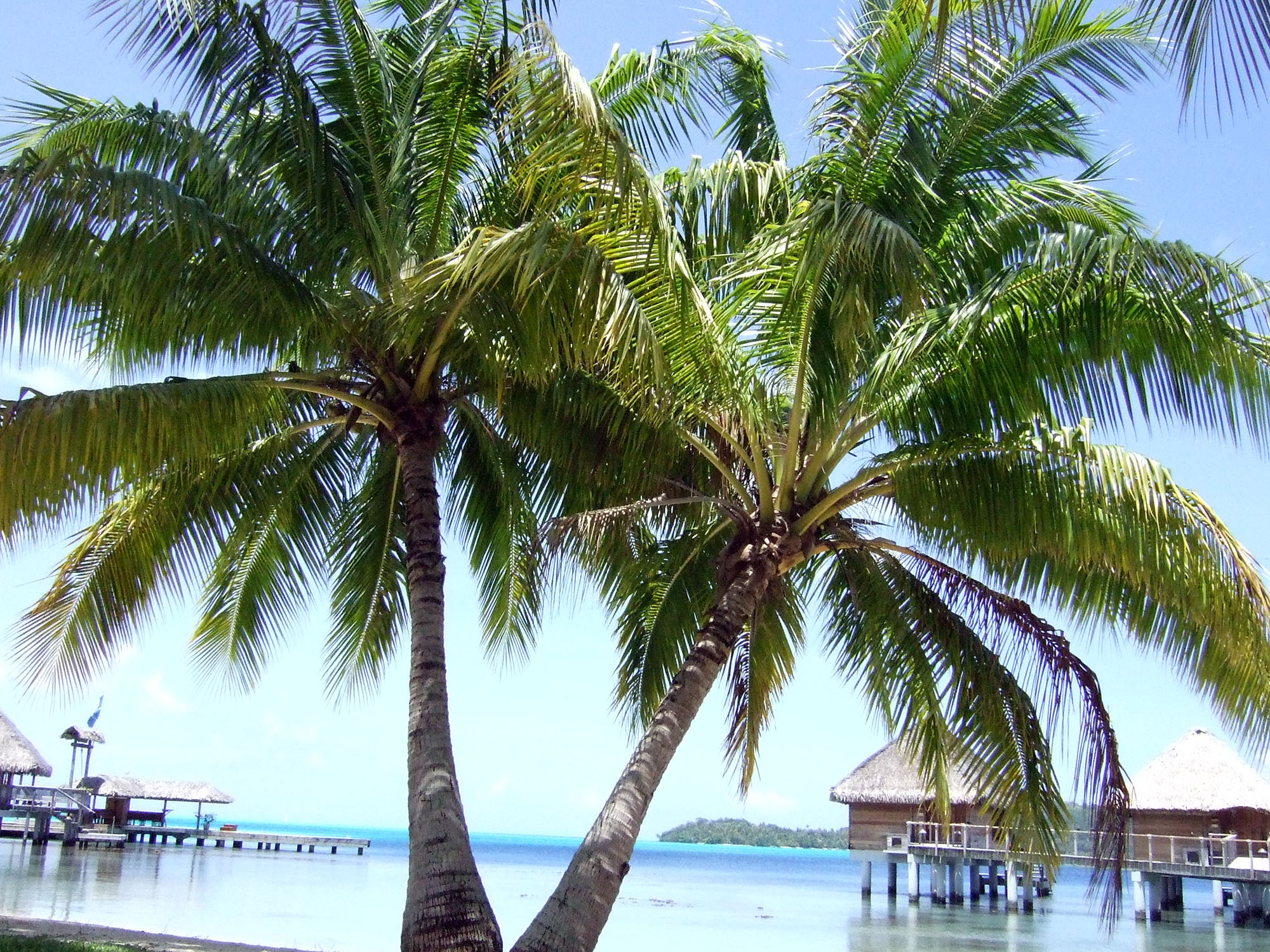borabora-island