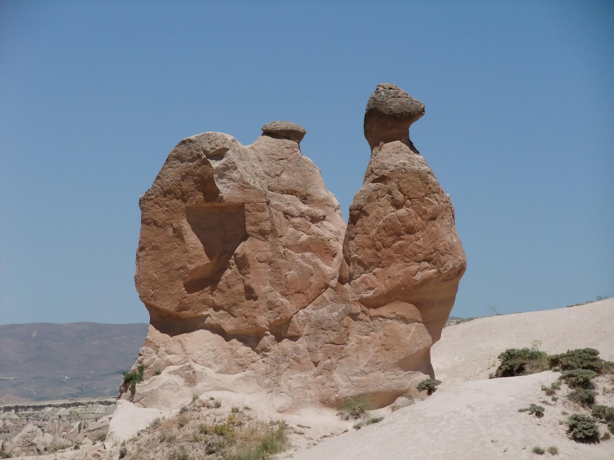 camel-rock
