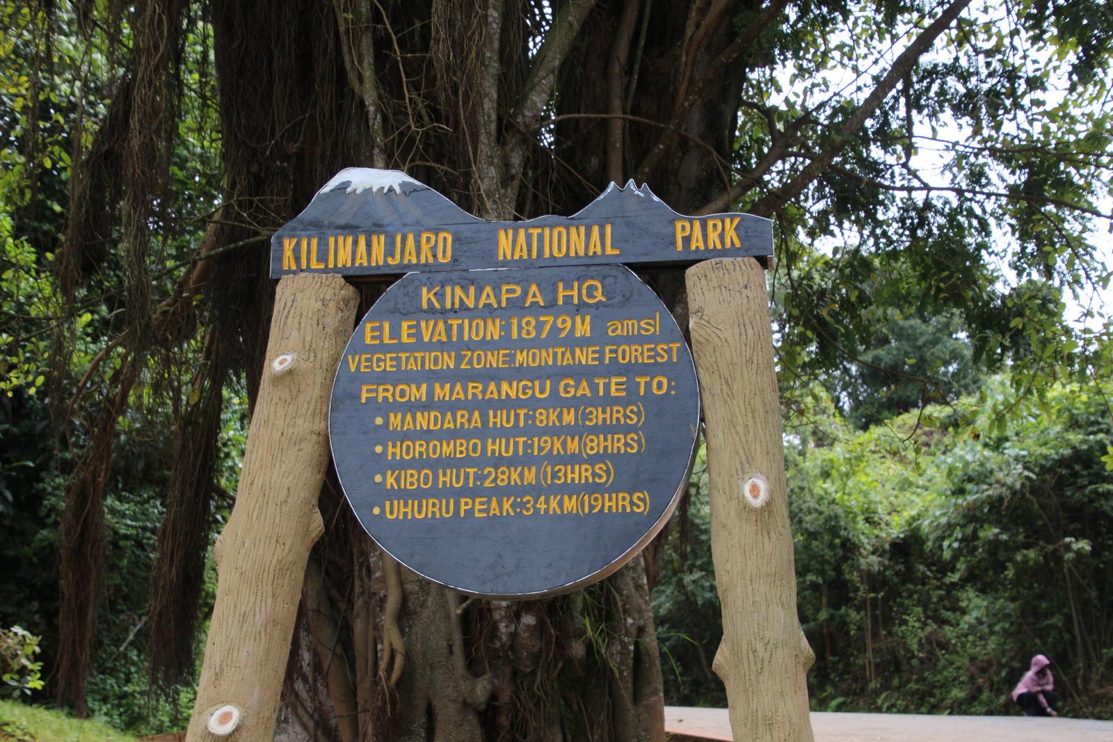 kilimanjaro marangu